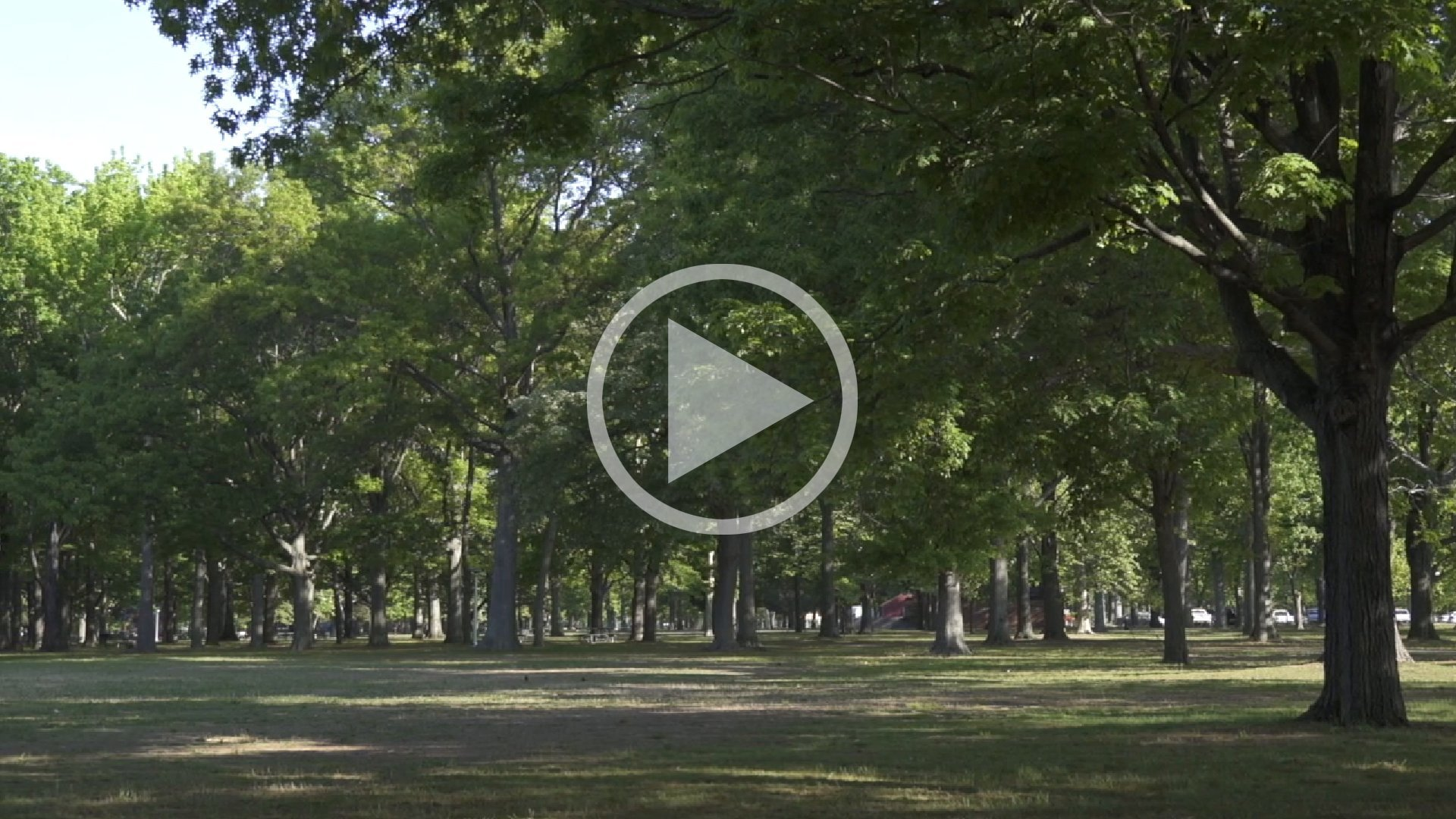 EXPLORE WILLISTON PARK
